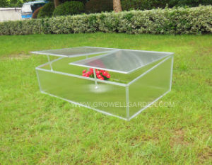 Cold Frame Greenhouse for Young Plants pictures & photos