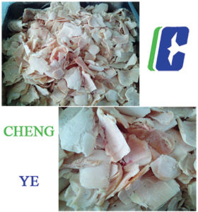 Qk553 Pork Meat Slicer/ Cutting Machine with Ce Certification 11.75kw pictures & photos