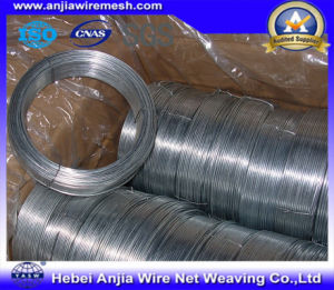 Factory Electro Hot-Dipped Galvanized Wire for Binding with (CE and SGS) pictures & photos