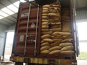 on Sale High Quality 25kg/Bag Dextrose Monohydrate of Power pictures & photos