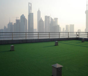 Guangzhou Act Landscape Garden Grass Carpet for Sale pictures & photos