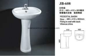839 Washdown S Trap or P Trap Two Piece Toilet with Bidet Function pictures & photos
