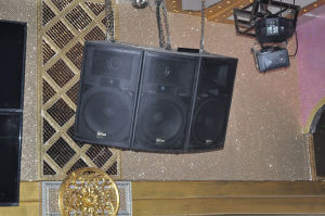 15 Inch High Power 3-Way Professional Loudspeaker (TOP-1563) pictures & photos