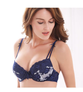 Fashion Sexy Lace Bra and Panty in Stock (CS21125) pictures & photos
