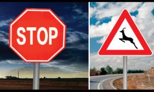 Engineering Grade Reflective Vinyl for Traffic Signs (H7200) pictures & photos