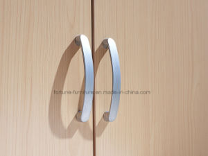 Modern Wooden Birch Veneer UV Matt Clear Lacquered 2 Doors Wardrobe (AD-FY-N1014-YG) pictures & photos