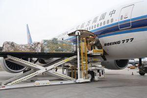 China 1 Stop Logistics Agent to South Africa and Africa pictures & photos