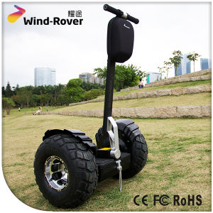 High Quality 2 Wheel Electric Scooter Self Balance Electric Mobility Scooter pictures & photos