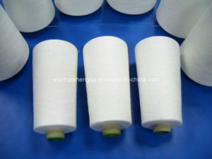 150 300 Denier Cone Dyed Polyester Yarn pictures & photos