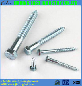 Hex Head Wood Screw / Hex Head Lag Screw