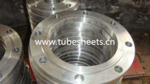 Hot Selling Stainless Steel Flange