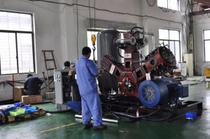 W Type Oil Free Bottle Blow Air Compressor pictures & photos