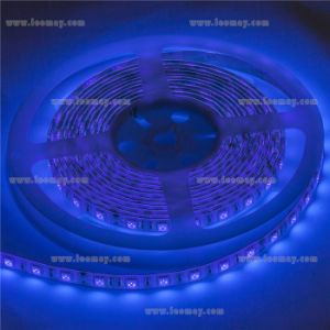 Blue Waterproof Flex LED Strip Lighting with Newest Design pictures & photos