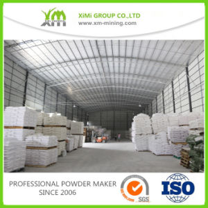 Factory Price Filler Barium Sulphate Baso4 for Coatings pictures & photos