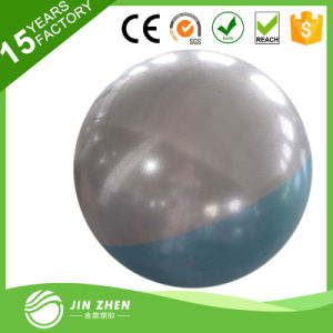 Health and Fitness Anti-Burst Stability Gym Ball