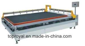 Glass Cutting Machine with Flotation pictures & photos