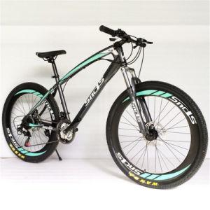 High Grade Aluminium Alloy Fat Bike Snow Bike Mountain Bike for Sale pictures & photos