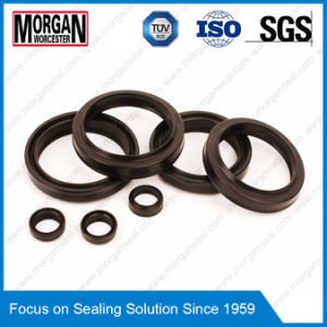 Lbi Profile Hydraulic Cylinder Rod Double Dust Wiper Seal Ring pictures & photos