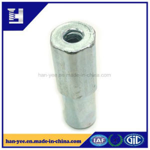 China Professional Factory Supplier Steel Fasteners pictures & photos