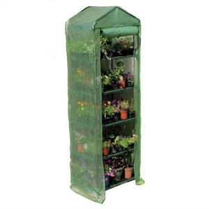 Hot Sales Garden Farm 5-Shelf Greenhouse with Mesh PE Cover pictures & photos