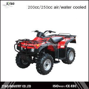 2016 Newest Farm Quad 250cc Jinling ATV pictures & photos