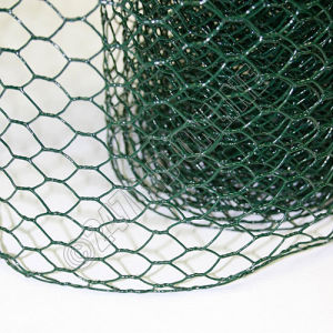 China Supplier of Galvanized Chicken Wire Mesh pictures & photos