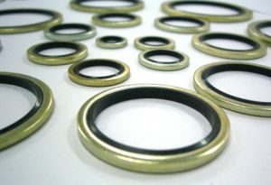 NBR EPDM Silicone Viton Piston Hydraulic Metal Rubber Bonded Seal Washer pictures & photos