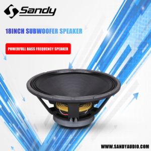 Professional DJ Woofer Speaker, Stage Speaker 18g100t pictures & photos