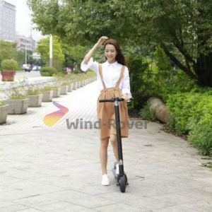 Wind Rover 6.5 Inch Mobility Scooter Foldable Electric Scooter Brushless Motor Scooter pictures & photos