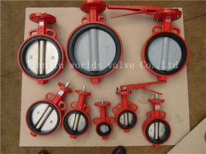 Soft Replaceable Rubber Butterfly Valve in Valves with Ce & ISO Approved (CBF02-TA04) pictures & photos