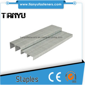 80/10mm Stainless Steel Medium Crown Staples pictures & photos