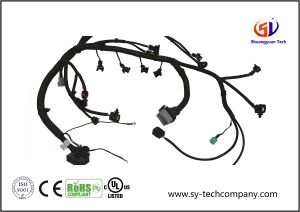 Wiring Harness for Car pictures & photos