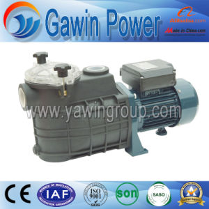 Global Warranty Fcp Series Filter Centrifugal Pump pictures & photos