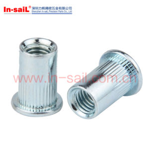 Hex Flange Serrated Knurled Rivet Nut pictures & photos