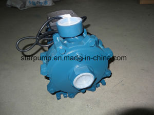 New Design Double Impeller Centrifigual Water Pump pictures & photos