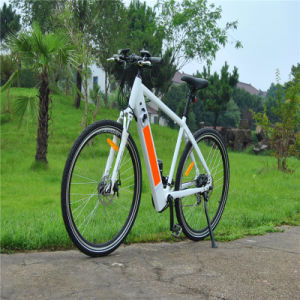 France and Germany Popular MTB Ebike Mountain Electric Bike 250W pictures & photos