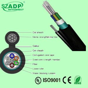 Stranded Single Mode Sm Loose Tube Self-Support Aerial Figure 8 Fiber Optic Cable (GYTC8A) pictures & photos