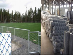 Galvanized Chain Link Mesh, Used Chain Link Fence pictures & photos