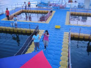 HDPE Floating Fish Farm Pontoon pictures & photos