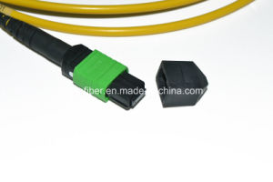 Qsfp Mtpapc 12f Cable Assembly, Sm G657A Fiber, Ofnp pictures & photos