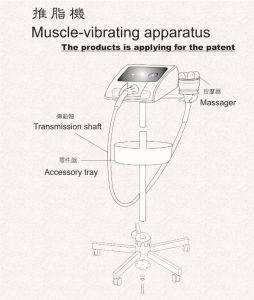 Super Body Shaper Vibration Machine pictures & photos