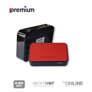 Ipremium Tvonline+ H. 265 WiFi IPTV Media Player with Leather Cover Mickyhop System and Stalker Middleware pictures & photos