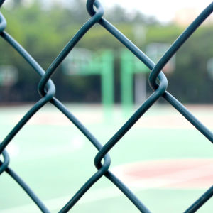 PVC Coated Stainless Steel Wire Mesh Chain Link Fence pictures & photos