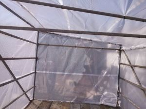 Economy Scaffold Sheeting pictures & photos