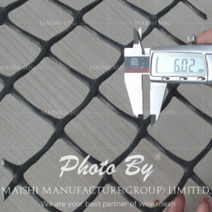 Extruded HDPE Flat Net pictures & photos