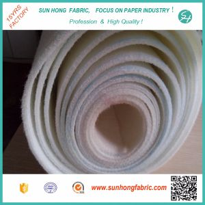 Paper Making Single Layer Press Felt pictures & photos