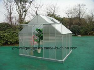 Sw8 Aluminium Hobby Greenhouse (SW806) pictures & photos