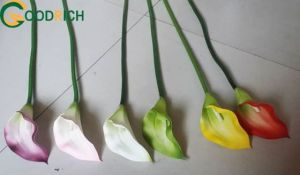 Real Touchartificial Flower Calla Lily pictures & photos