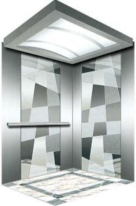 Italy Professional Home Hydraulic Villa Elevator (RLS-125) pictures & photos