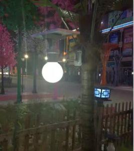 Bluesmart 5 Year Warranty Outdoor Solar Garden LED Street Light with Sensor pictures & photos